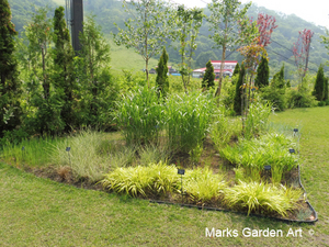 Hakuba_Grass_02_June.JPG