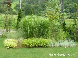 Hakuba_Grass_05_August.JPG
